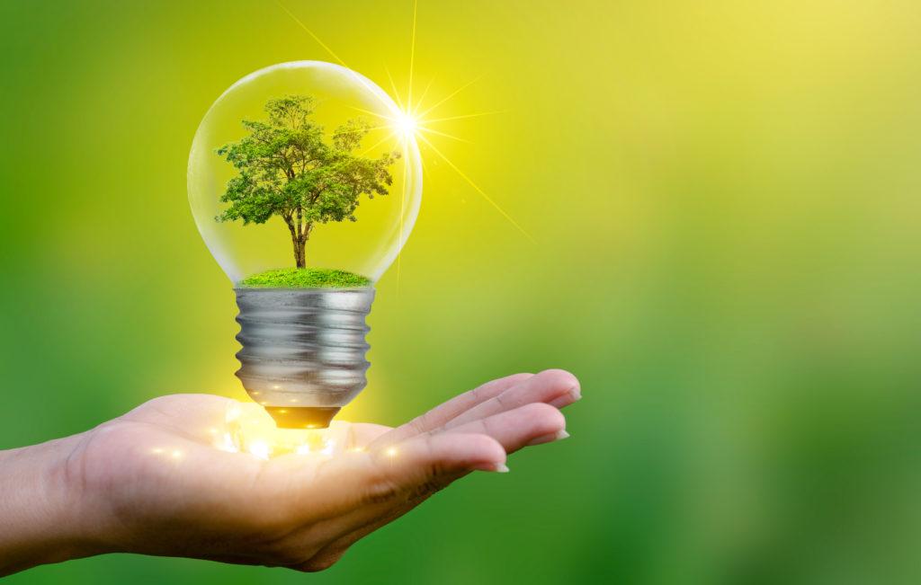 La loi Énergie-Climat: un nouveau pilier de notre ambition pour la transition écologique